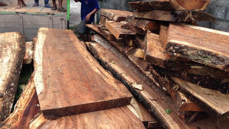 Bali wood slab acacia teak
