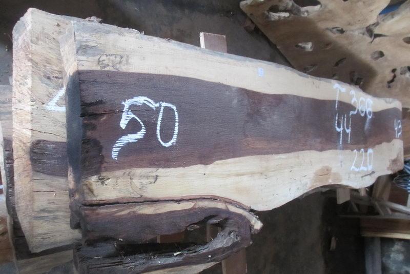 T366 (2)