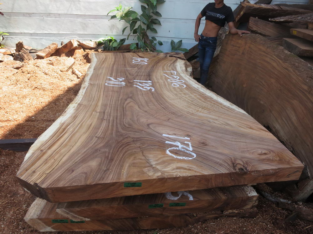 Special promo table 300 cm t586 bali wood slab for Table 300 cm